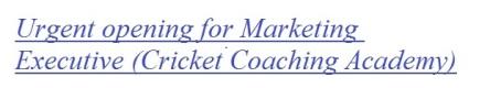 Urgent opening for Marketing Executive (Cricket Coaching Academy)